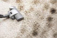 Як почистити брудний килим