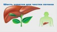 Як почистити печінку - відео порада