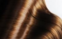 4 растительных средств для ухода за волосами