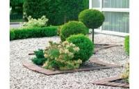 Як створити сад з гравію своїми руками
