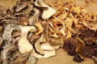 Правильне зберігання сушених грибів в домашніх умовах