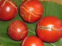 Я виростити врожай помідорів. Знищення шкідників помідорів