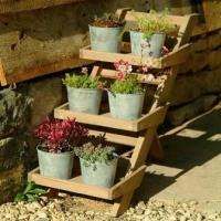 Як зробити полиці (стелажі, етажерки) для квітів. Прикрашаємо інтер'єр
