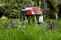 Купуємо газонокосарку бензинову самохідну для нерівної ділянки