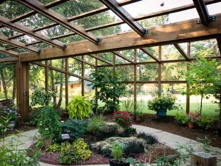 Зимний сад как и где сажать растения в оранжерее